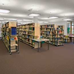 Biblioteca stlüta